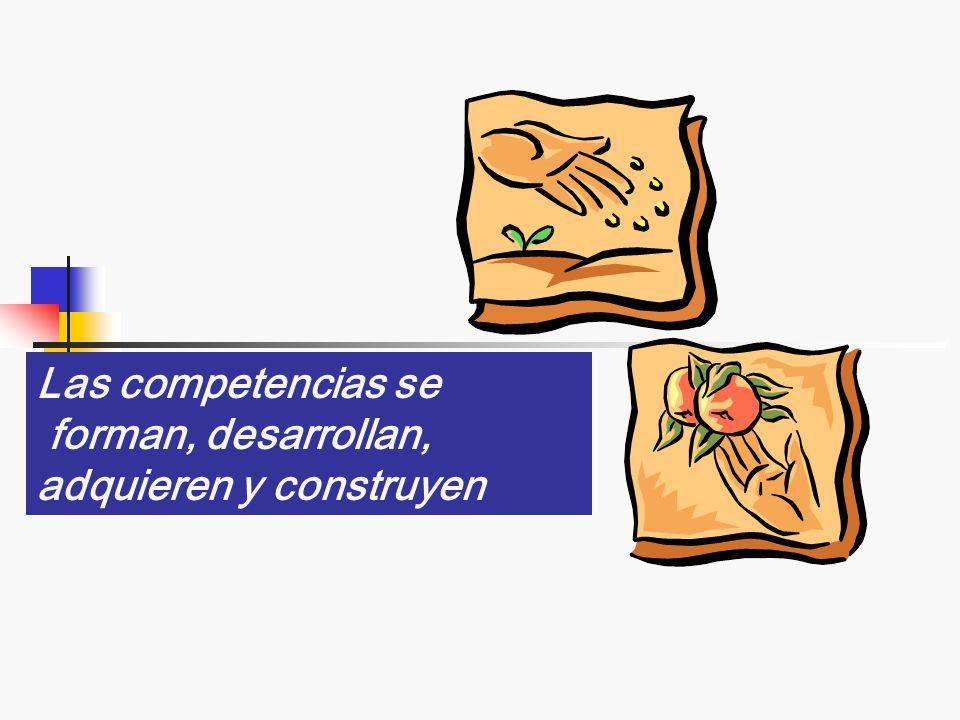 NORMAS DE COMPETENCIA LABORAL Competencia Elemento de competencia Criterios de desempeño Evidencias de conocimiento y desempeño Campo de aplicación Gu