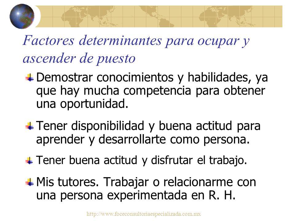 http://www.foceconsultoriaespecializada.com.mx Hablar y escribir en inglés Áreas de conocimientos y habilidades en que se han capacitado