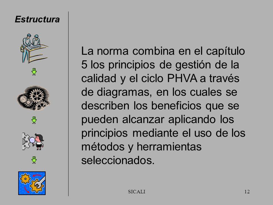 SICALI11 Estructura En el documento se identifican los procesos pertinentes para cada principio y se proporcionan ejemplos de herramientas y métodos a