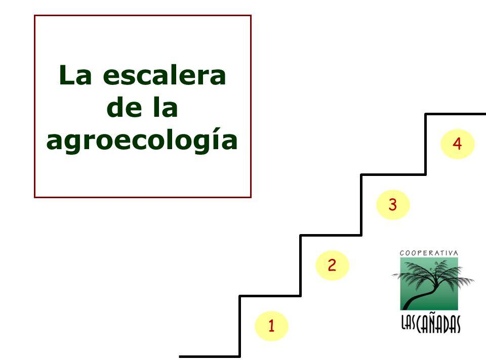 1 2 3 4 La escalera de la agroecología