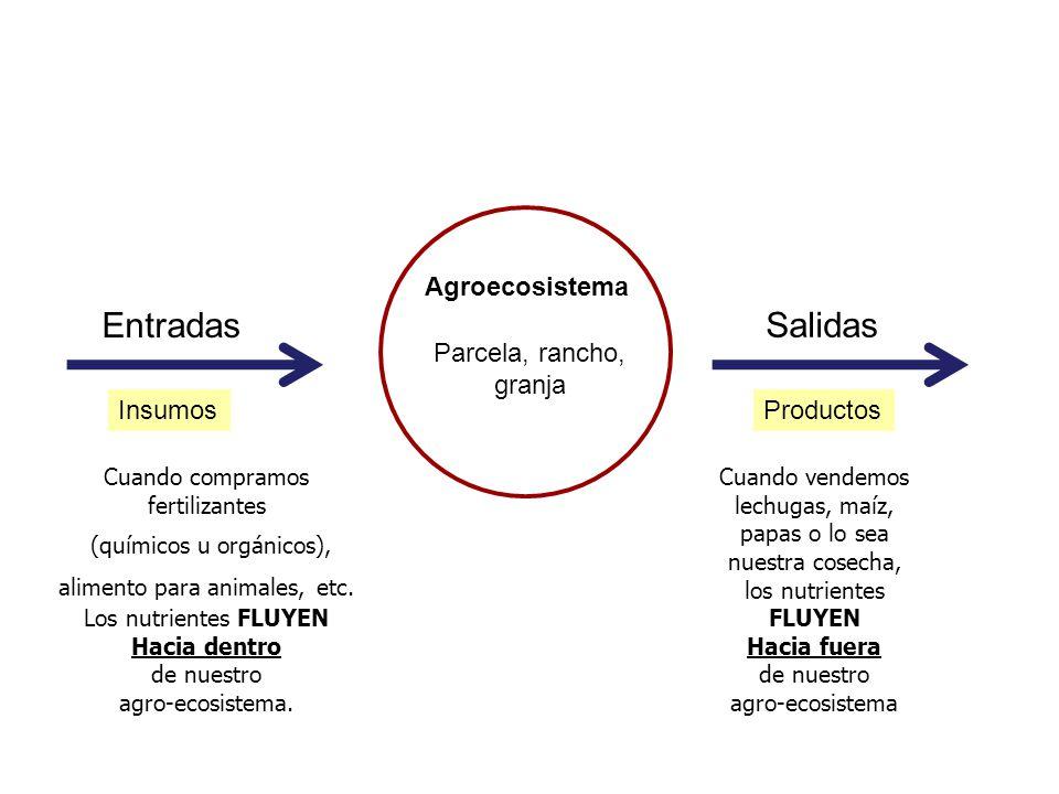 Agroecosistema Parcela, rancho, granja Entradas Salidas ProductosInsumos Cuando compramos fertilizantes (químicos u orgánicos), alimento para animales, etc.