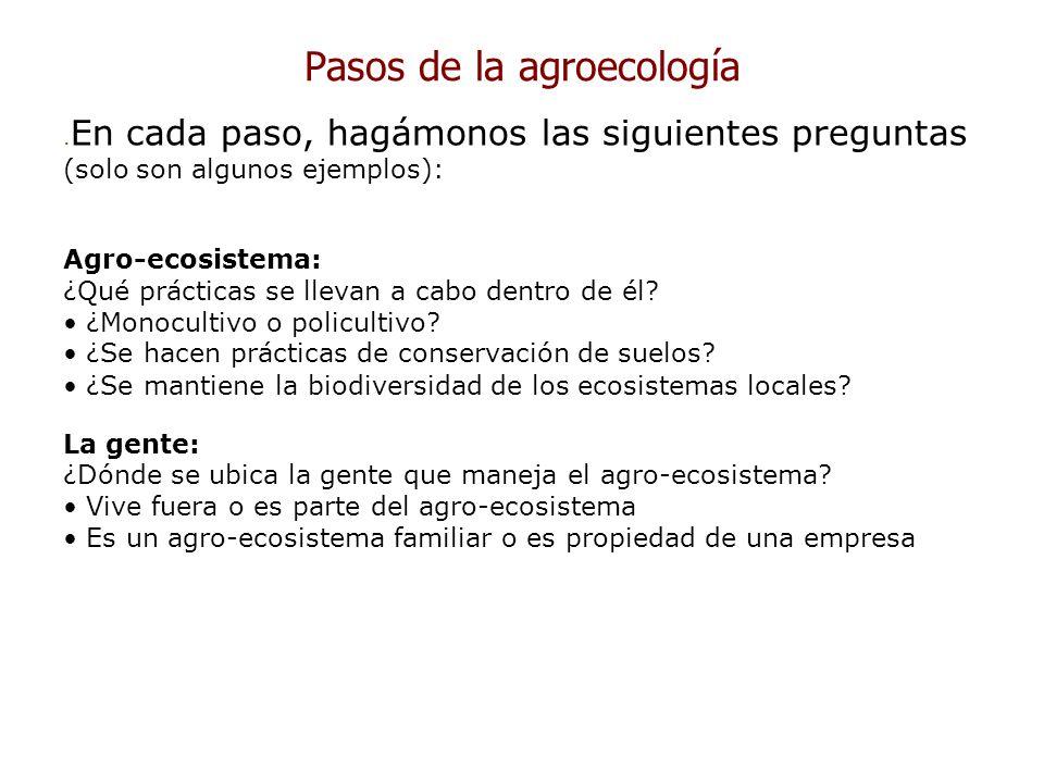 Pasos de la agroecología. En cada paso, hagámonos las siguientes preguntas (solo son algunos ejemplos): Agro-ecosistema: ¿Qué prácticas se llevan a ca