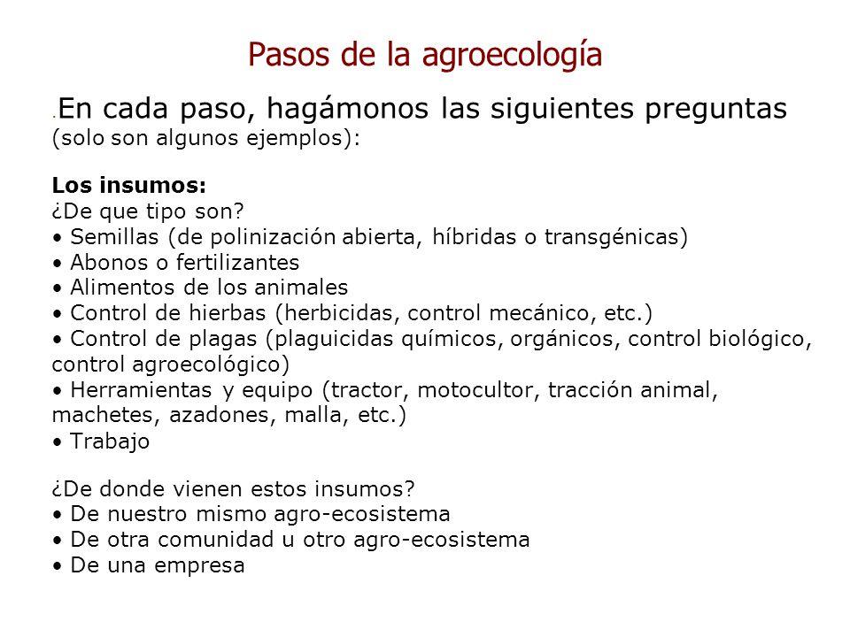 Pasos de la agroecología. En cada paso, hagámonos las siguientes preguntas (solo son algunos ejemplos): Los insumos: ¿De que tipo son? Semillas (de po