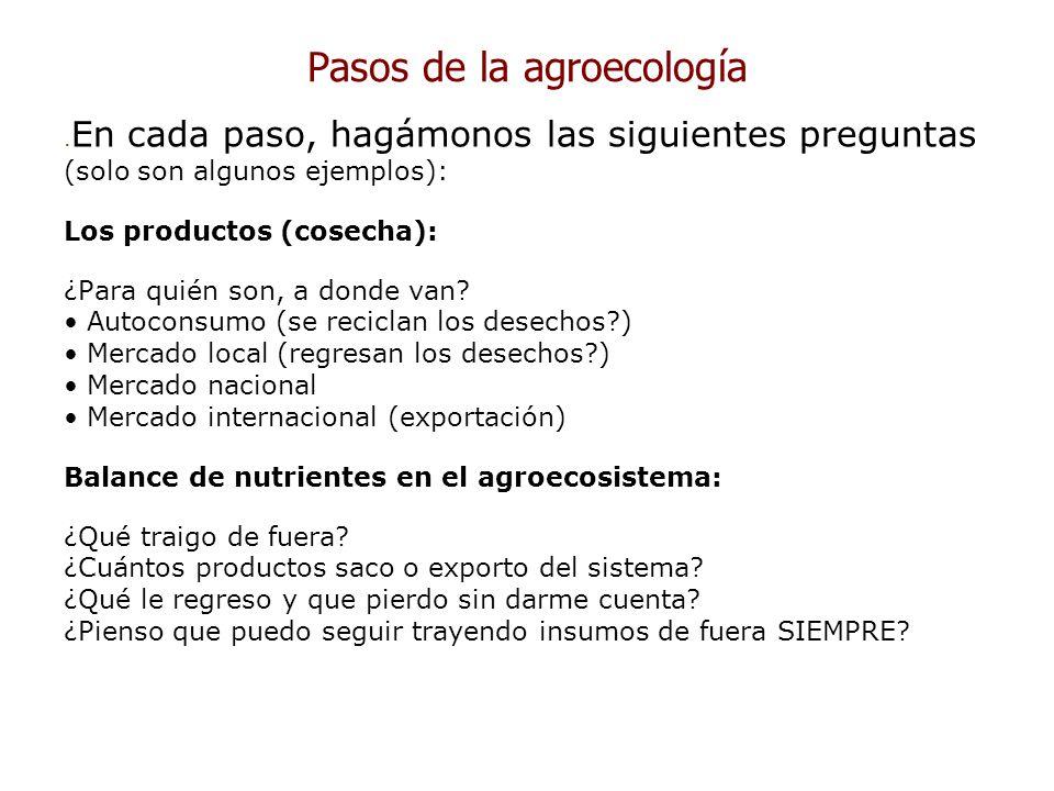 Pasos de la agroecología. En cada paso, hagámonos las siguientes preguntas (solo son algunos ejemplos): Los productos (cosecha): ¿Para quién son, a do