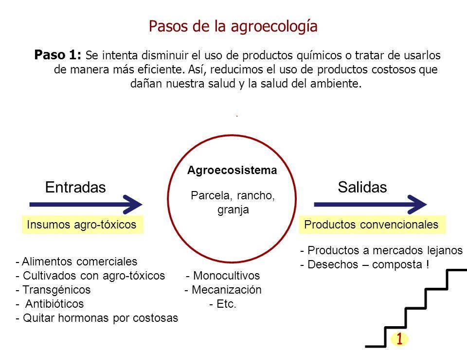 Pasos de la agroecología Paso 1: Se intenta disminuir el uso de productos químicos o tratar de usarlos de manera más eficiente. Así, reducimos el uso