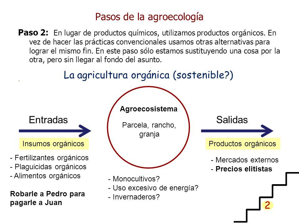 Pasos de la agroecología Paso 2: En lugar de productos químicos, utilizamos productos orgánicos. En vez de hacer las prácticas convencionales usamos o