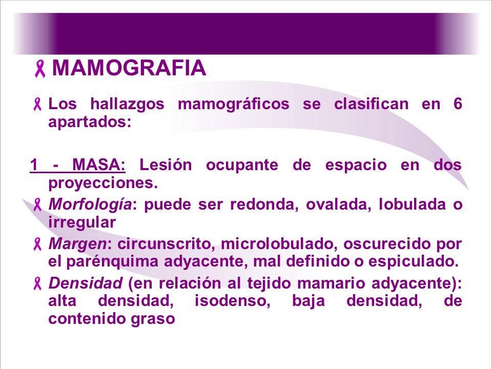 MAMOGRAFIA Los hallazgos mamográficos se clasifican en 6 apartados: 1 - MASA: Lesión ocupante de espacio en dos proyecciones. Morfología: puede ser re