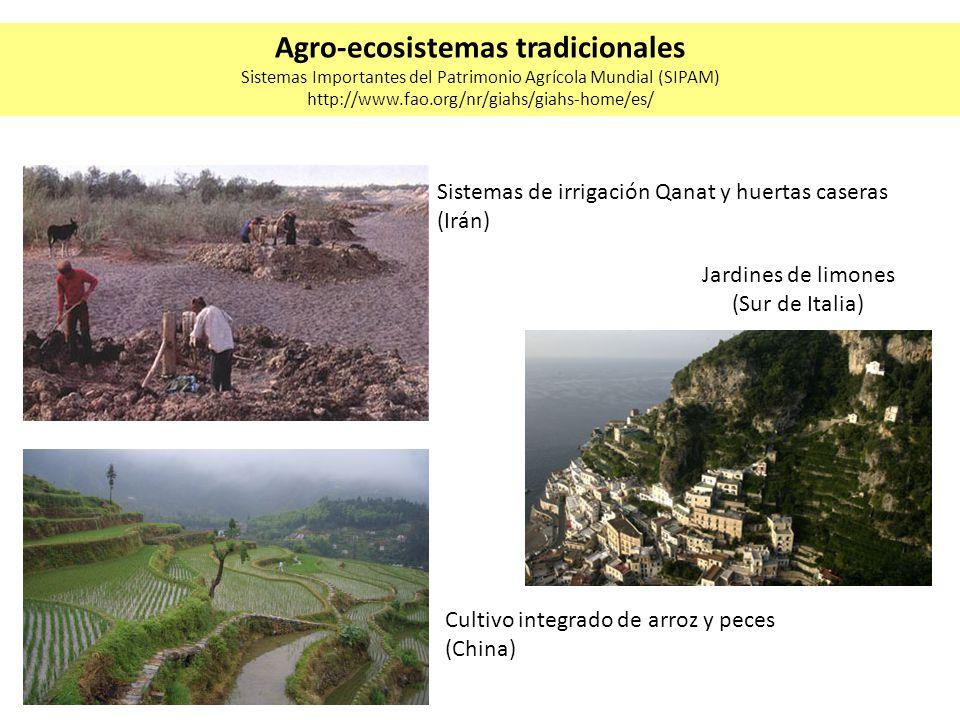 Cultivo integrado de arroz y peces (China) Jardines de limones (Sur de Italia) Sistemas de irrigación Qanat y huertas caseras (Irán) Agro-ecosistemas