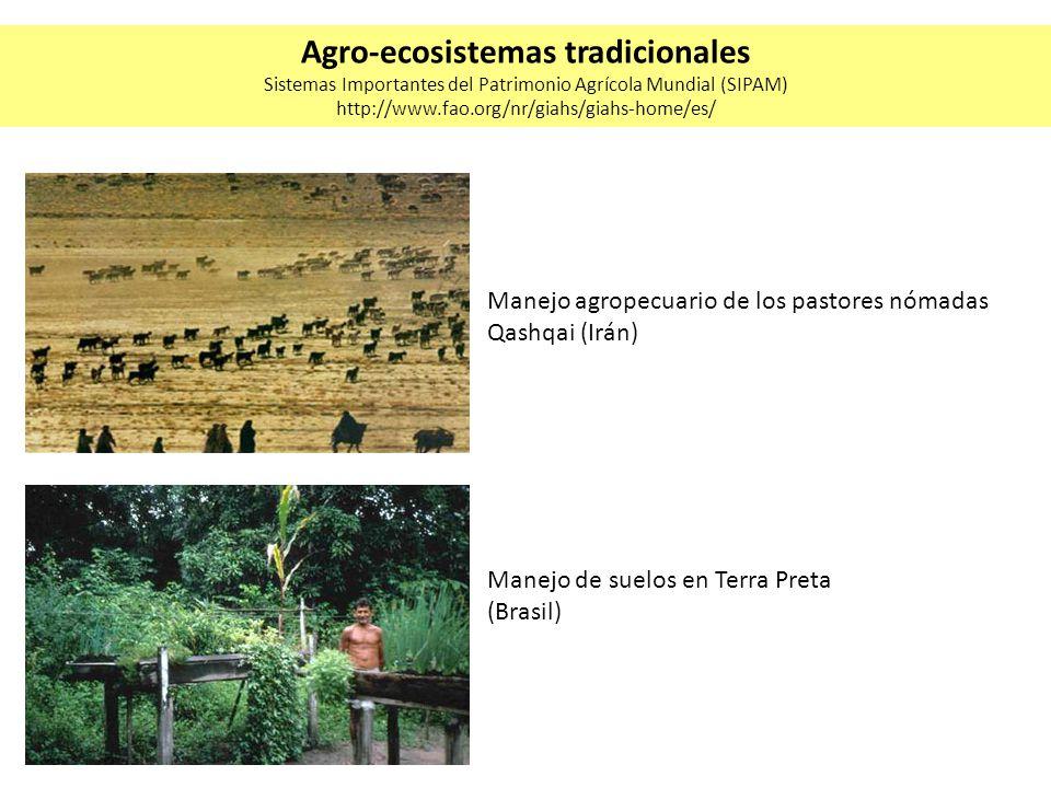 Manejo de suelos en Terra Preta (Brasil) Manejo agropecuario de los pastores nómadas Qashqai (Irán) Agro-ecosistemas tradicionales Sistemas Importante