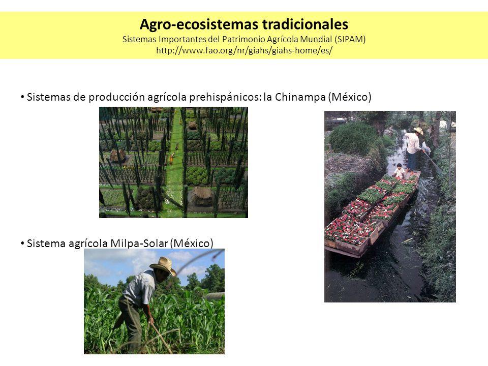 Sistemas de producción agrícola prehispánicos: la Chinampa (México) Sistema agrícola Milpa-Solar (México) Agro-ecosistemas tradicionales Sistemas Impo