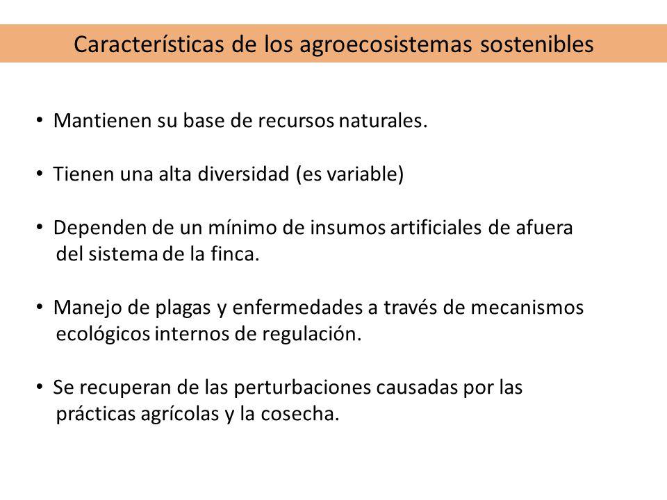 Características de los agroecosistemas sostenibles Mantienen su base de recursos naturales. Tienen una alta diversidad (es variable) Dependen de un mí