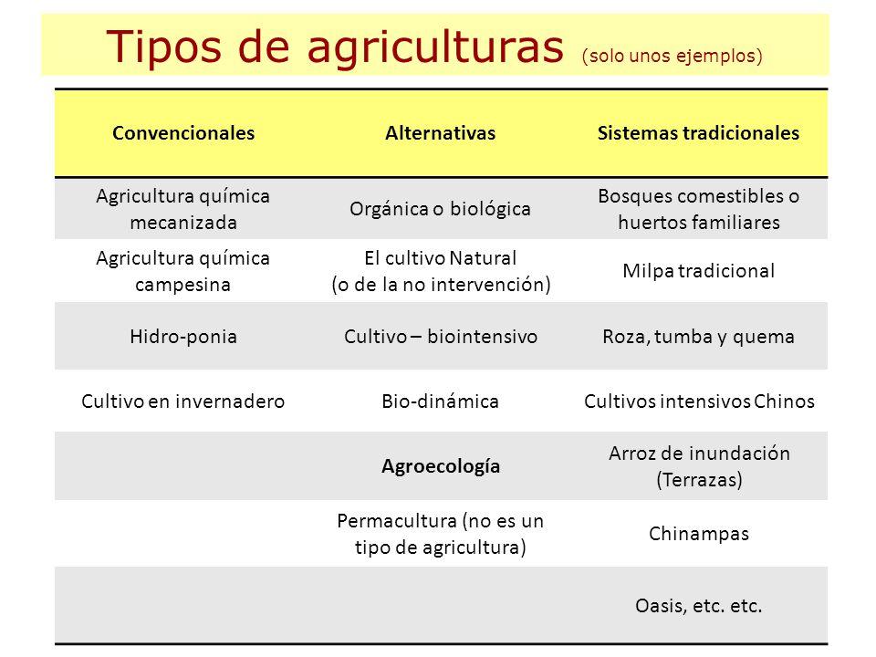 Tipos de agriculturas (solo unos ejemplos) ConvencionalesAlternativasSistemas tradicionales Agricultura química mecanizada Orgánica o biológica Bosque