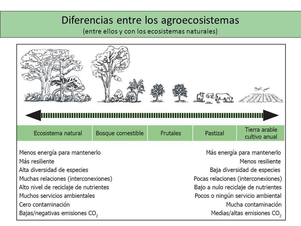 Diferencias entre los agroecosistemas (entre ellos y con los ecosistemas naturales)