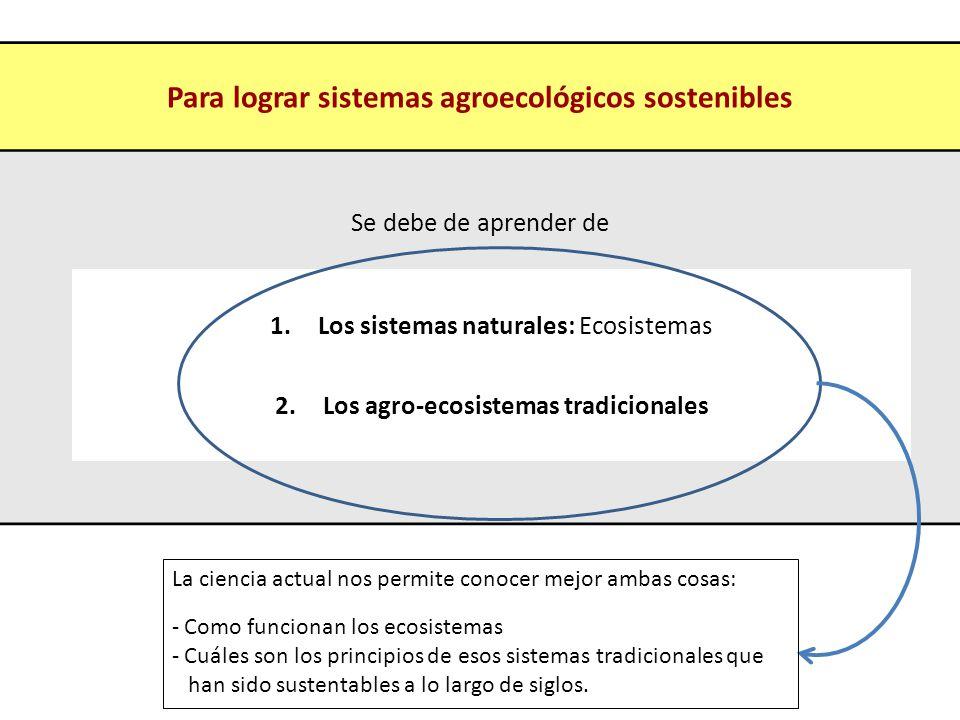 Para lograr sistemas agroecológicos sostenibles Se debe de aprender de 1.Los sistemas naturales: Ecosistemas 2.Los agro-ecosistemas tradicionales La c