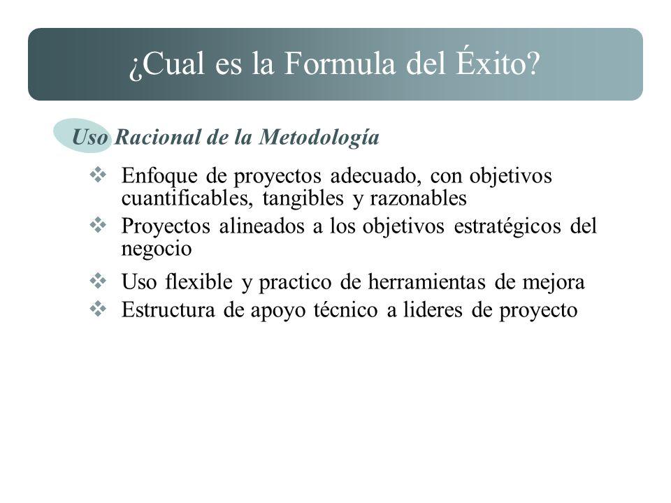 ¿Cual es la Formula del Éxito? Enfoque de proyectos adecuado, con objetivos cuantificables, tangibles y razonables Proyectos alineados a los objetivos