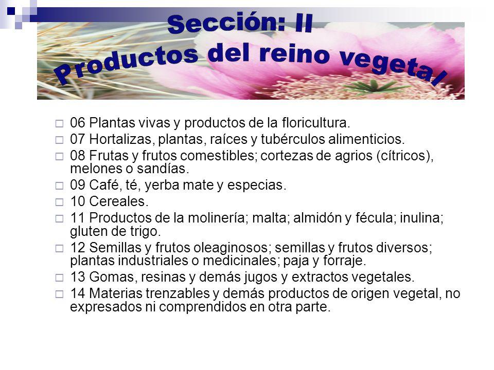 06 Plantas vivas y productos de la floricultura.