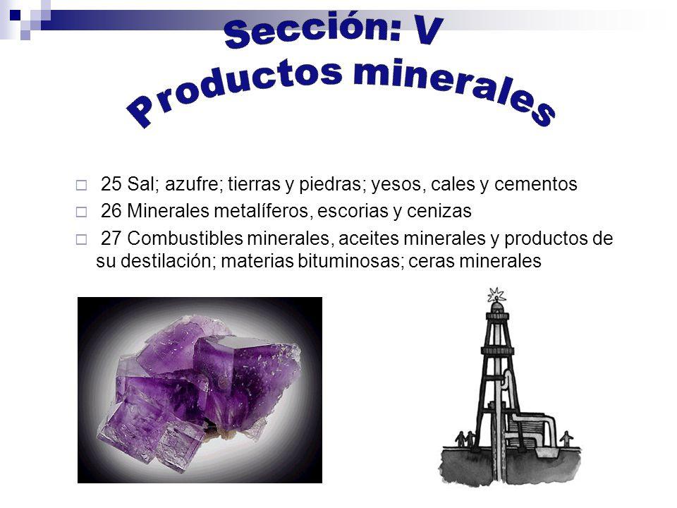 25 Sal; azufre; tierras y piedras; yesos, cales y cementos 26 Minerales metalíferos, escorias y cenizas 27 Combustibles minerales, aceites minerales y productos de su destilación; materias bituminosas; ceras minerales
