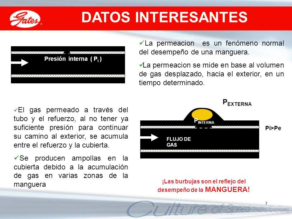 7 FLUJO DE GAS Presión interna ( P i ) La permeacion es un fenómeno normal del desempeño de una manguera. La permeacion se mide en base al volumen de