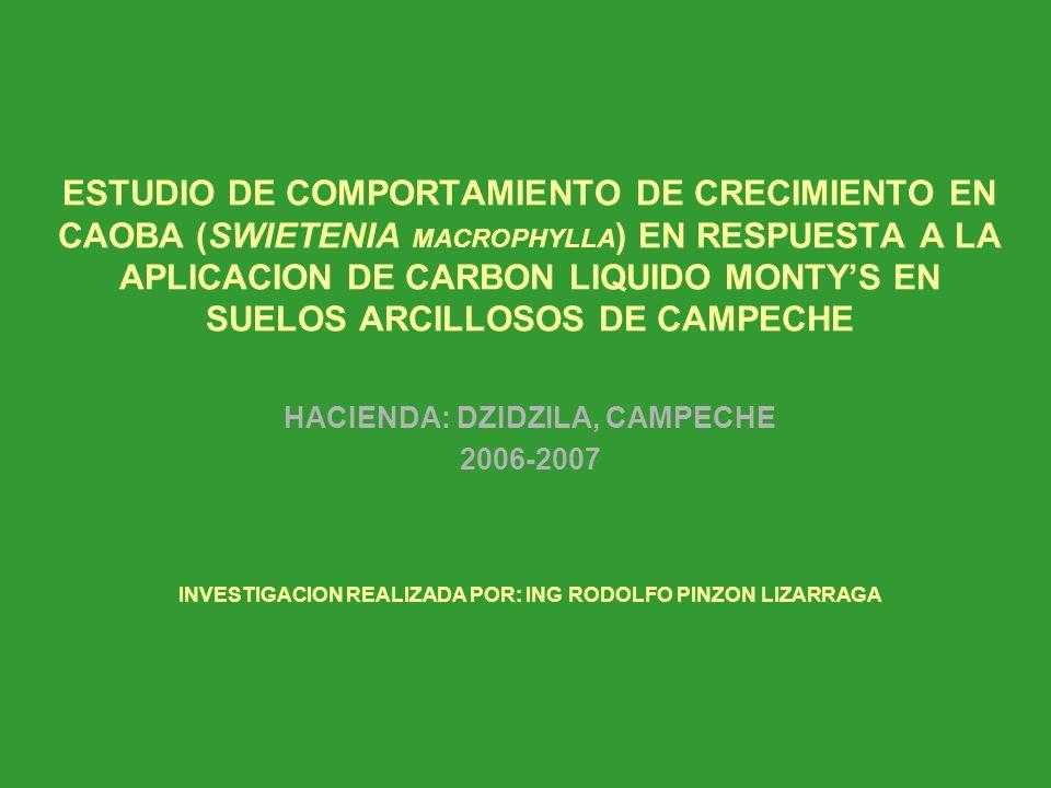 ESTUDIO DE COMPORTAMIENTO DE CRECIMIENTO EN CAOBA (SWIETENIA MACROPHYLLA ) EN RESPUESTA A LA APLICACION DE CARBON LIQUIDO MONTYS EN SUELOS ARCILLOSOS DE CAMPECHE HACIENDA: DZIDZILA, CAMPECHE 2006-2007 INVESTIGACION REALIZADA POR: ING RODOLFO PINZON LIZARRAGA