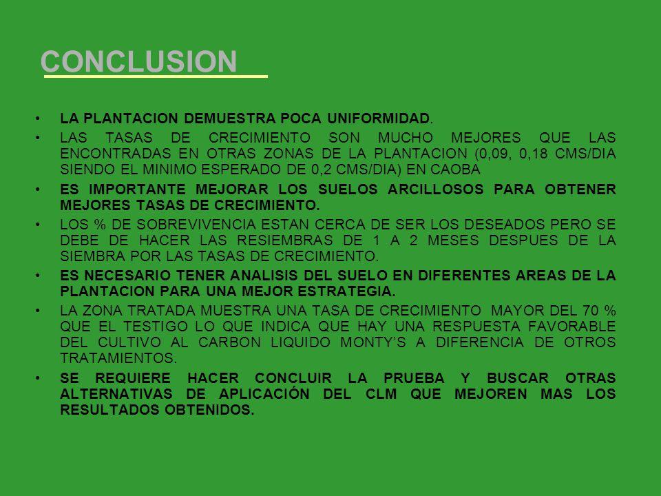 CONCLUSION LA PLANTACION DEMUESTRA POCA UNIFORMIDAD. LAS TASAS DE CRECIMIENTO SON MUCHO MEJORES QUE LAS ENCONTRADAS EN OTRAS ZONAS DE LA PLANTACION (0