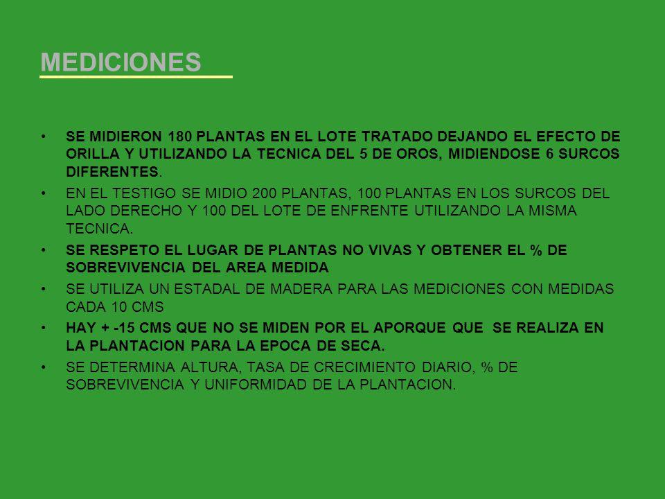 DATOS OBTENIDOS INICIO 1/8/06 1a MED CMS 2a MED 3/05/07 CMS TOTAL DIAS TRANSC.