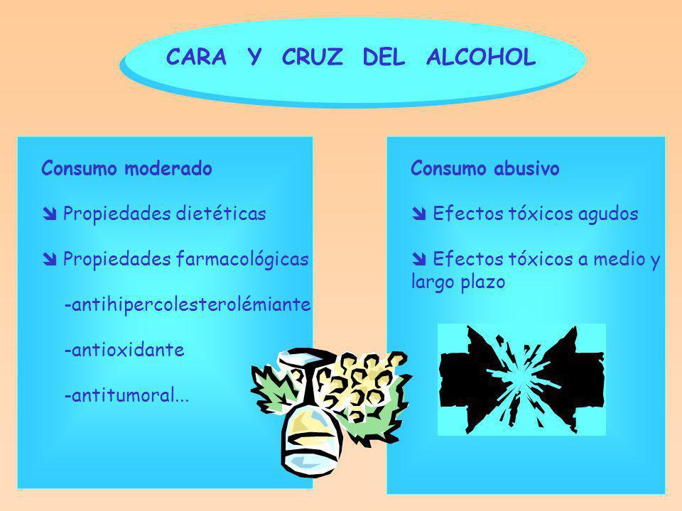 CARA Y CRUZ DEL ALCOHOL Consumo moderado Propiedades dietéticas Propiedades farmacológicas -antihipercolesterolémiante -antioxidante -antitumoral...