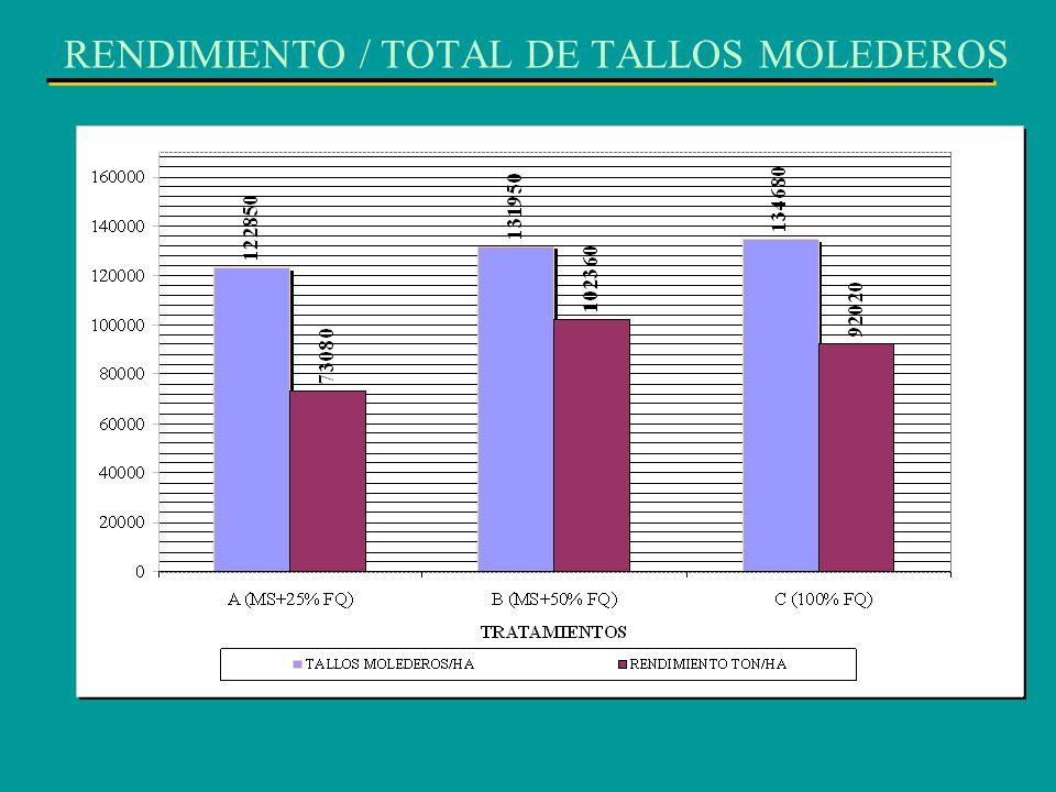 RENDIMIENTO / TOTAL DE TALLOS MOLEDEROS