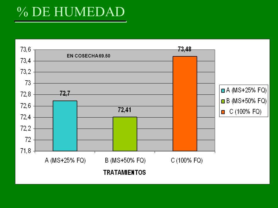 % DE HUMEDAD EN COSECHA 69.50