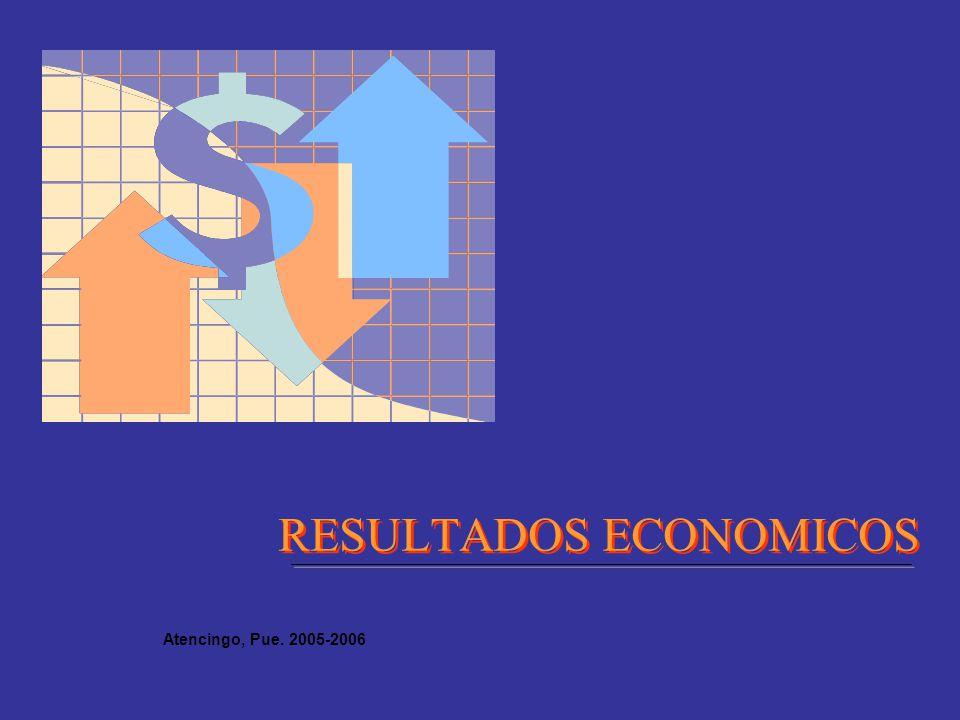 RESULTADOS ECONOMICOS Atencingo, Pue. 2005-2006