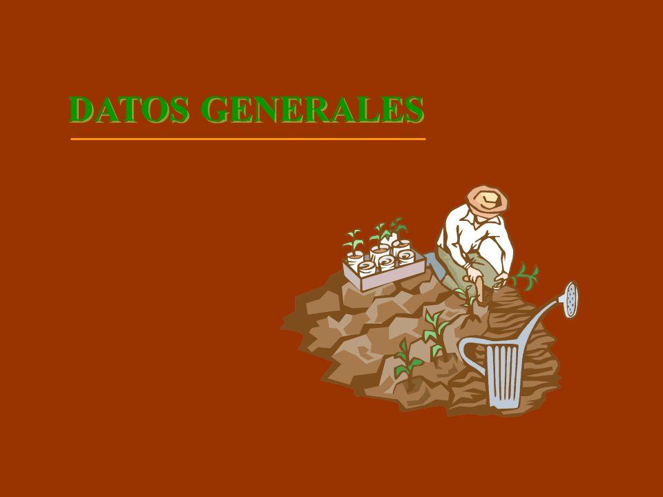 DATOS GENERALES PRUEBA LUGAR: TILAPA, PUEBLA CULTIVO: CAÑA DE AZUCAR REALIZA: INGENIO DE ATENCINGO VARIEDAD: 51 (MEX 57-473) CORTES: SOCA TRATAMIENTOS: 3 CON 2 REPETICIONES FERTILIZACION: 1,600 KG EN 2 APLICACIONES PARCELA MUESTRA: 217.80 M2 / REPETICION TIPO DE SUELO: FRANCO-ARENOSO (ATOCLE) RIEGO: RODADO CADA 20 DIAS DURACION DE LA PRUEBA: 12 MESES (MARZO 2005 A MARZO DEL 2006