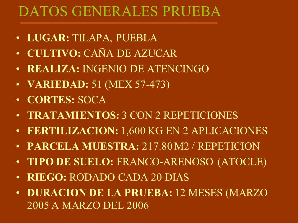 DATOS GENERALES PRUEBA LUGAR: TILAPA, PUEBLA CULTIVO: CAÑA DE AZUCAR REALIZA: INGENIO DE ATENCINGO VARIEDAD: 51 (MEX 57-473) CORTES: SOCA TRATAMIENTOS