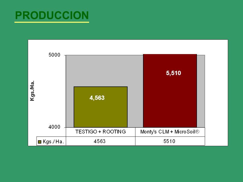 PRODUCCION 4,563 5,510