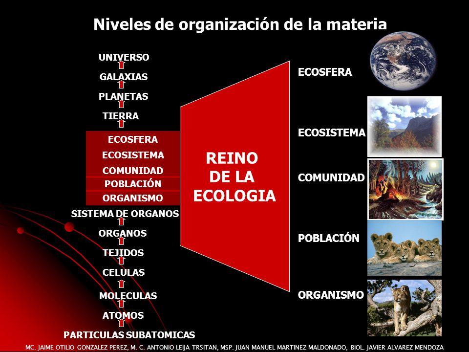 MC. JAIME OTILIO GONZALEZ PEREZ, M. C. ANTONIO LEIJA TRSITAN, MSP. JUAN MANUEL MARTINEZ MALDONADO, BIOL. JAVIER ALVAREZ MENDOZA Niveles de organizació