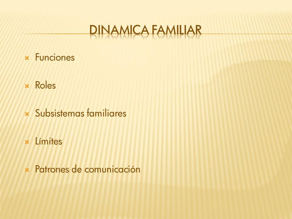 Funciones Roles Subsistemas familiares Límites Patrones de comunicación