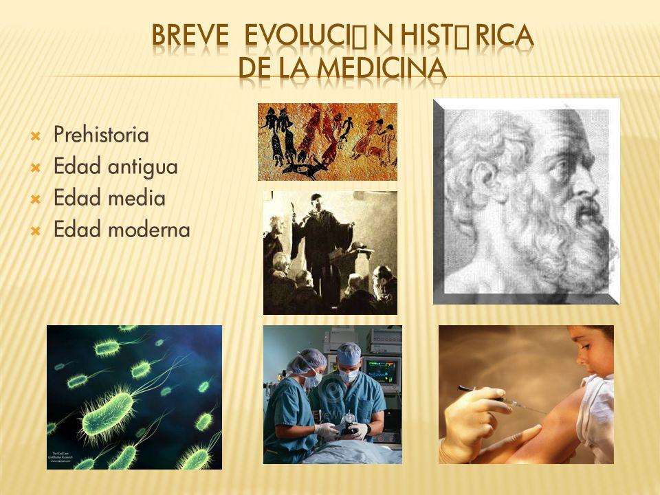 Prehistoria Edad antigua Edad media Edad moderna