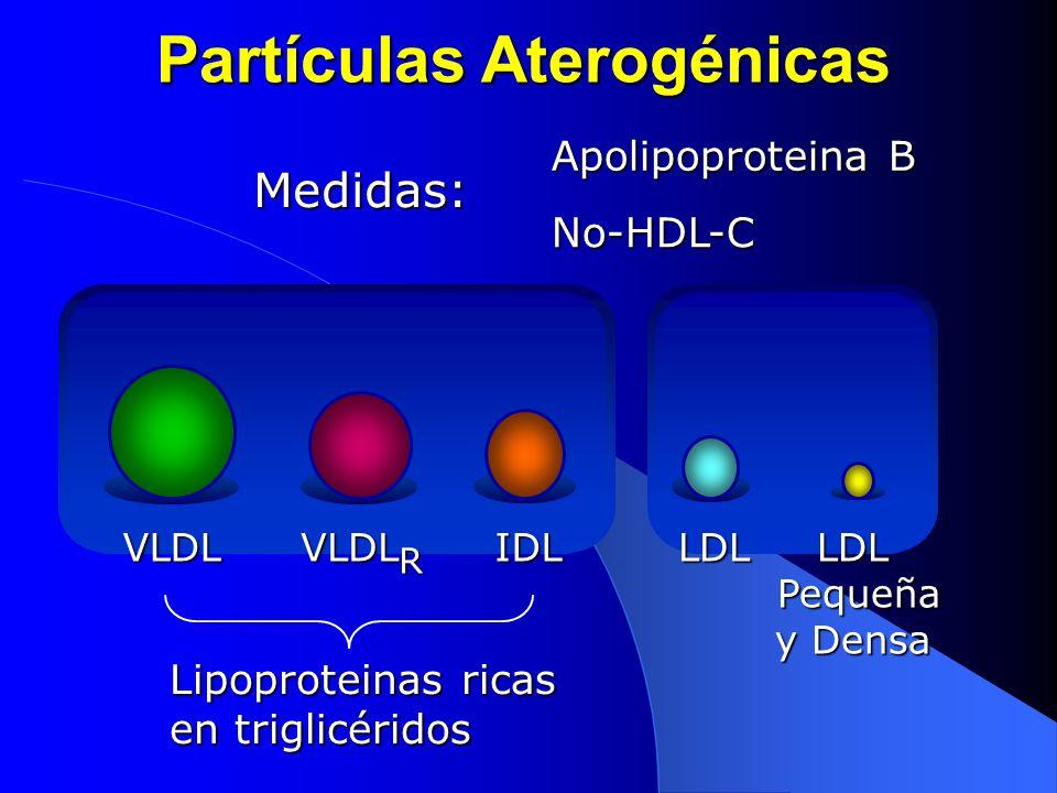 Partículas Aterogénicas Apolipoproteina B No-HDL-C Medidas: Lipoproteinas ricas en triglicéridos VLDL VLDL R IDLLDLLDL Pequeña y Densa