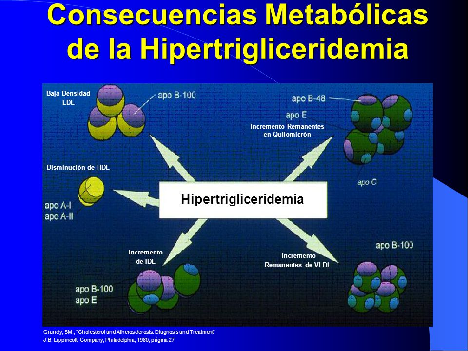 Consecuencias Metabólicas de la Hipertrigliceridemia Hipertrigliceridemia Baja Densidad LDL Incremento Remanentes en Quilomicrón Disminución de HDL In
