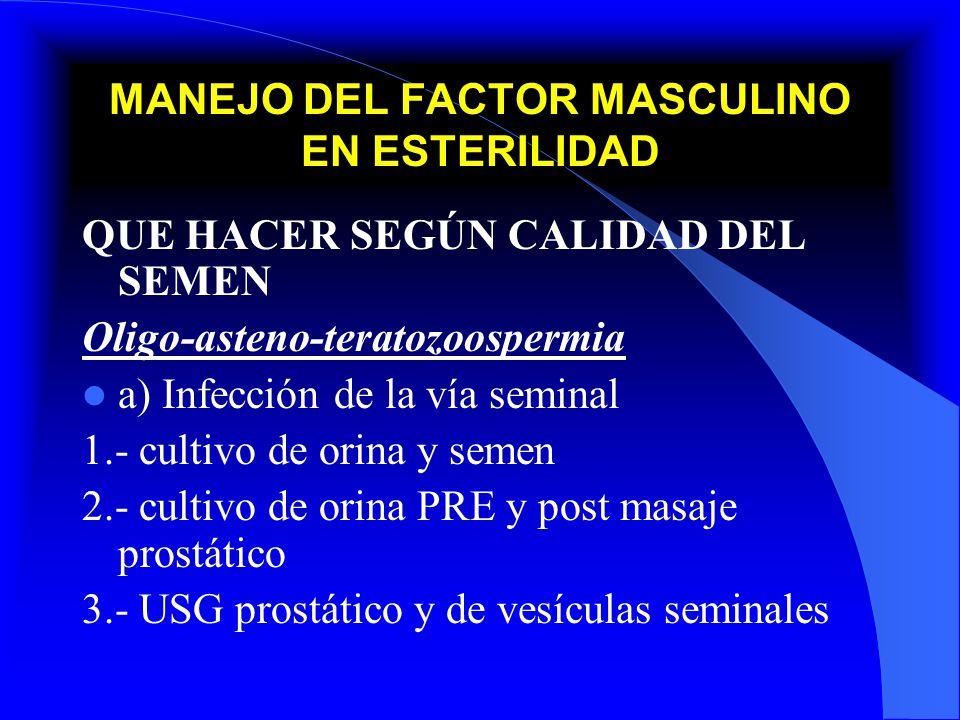 MANEJO DEL FACTOR MASCULINO EN ESTERILIDAD QUE HACER SEGÚN CALIDAD DEL SEMEN Oligo-asteno-teratozoospermia a) Infección de la vía seminal 1.- cultivo