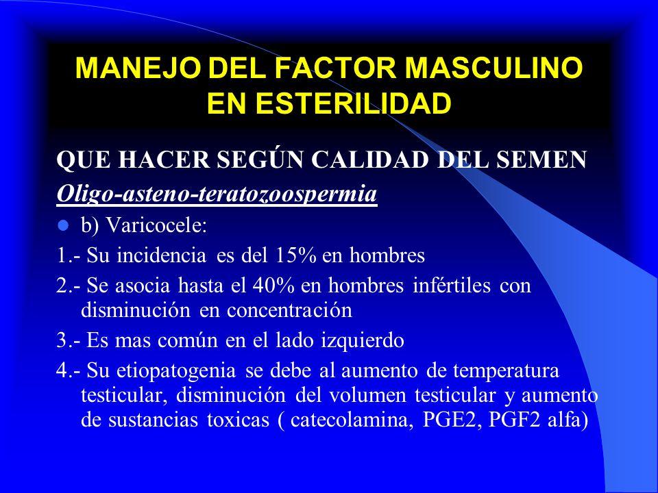 MANEJO DEL FACTOR MASCULINO EN ESTERILIDAD QUE HACER SEGÚN CALIDAD DEL SEMEN Oligo-asteno-teratozoospermia b) Varicocele: 1.- Su incidencia es del 15%