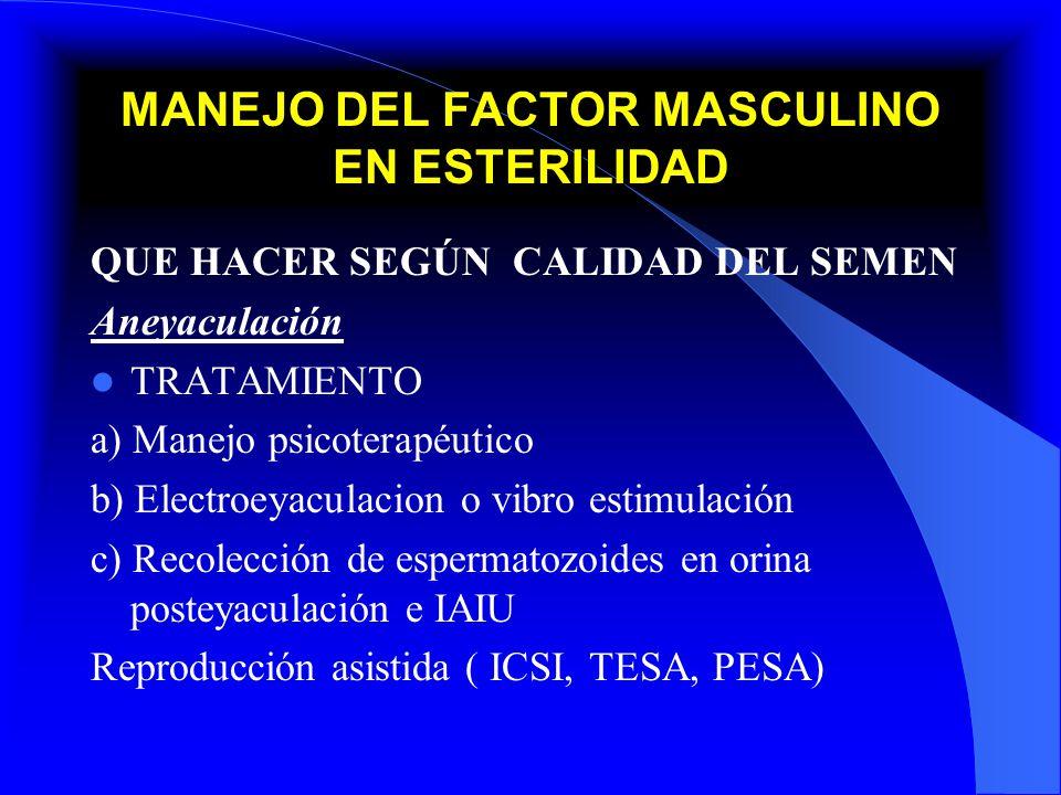 MANEJO DEL FACTOR MASCULINO EN ESTERILIDAD QUE HACER SEGÚN CALIDAD DEL SEMEN Aneyaculación TRATAMIENTO a) Manejo psicoterapéutico b) Electroeyaculacio