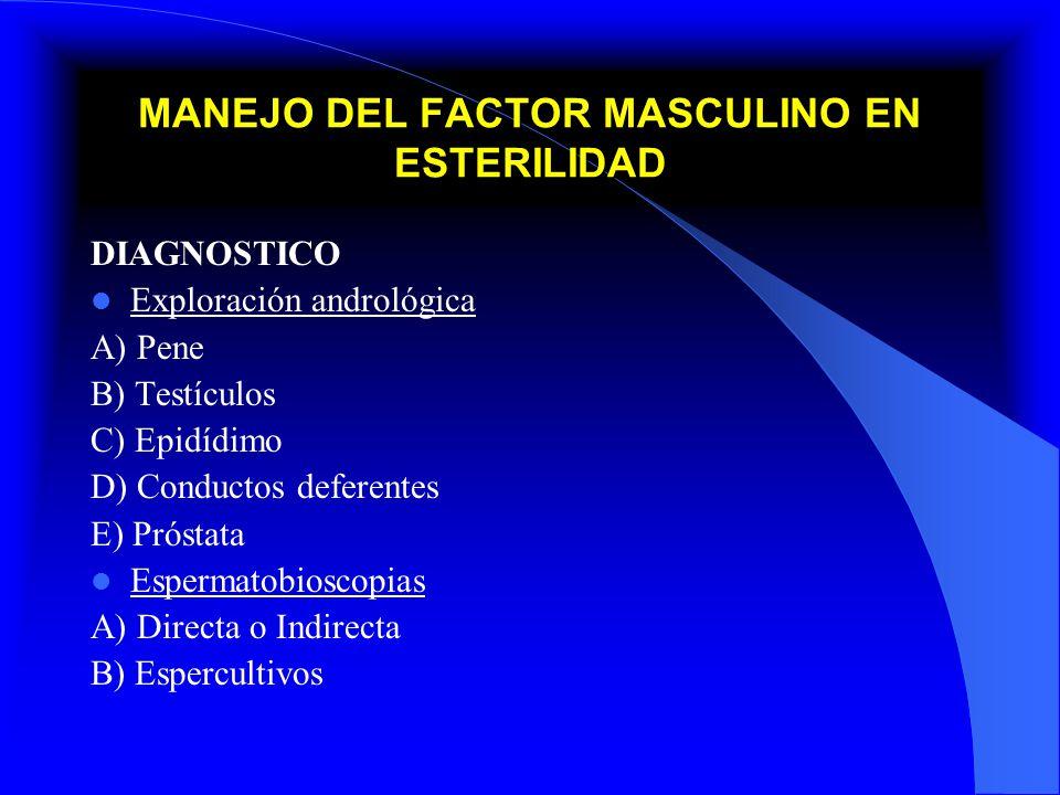 MANEJO DEL FACTOR MASCULINO EN ESTERILIDAD DIAGNOSTICO Exploración andrológica A) Pene B) Testículos C) Epidídimo D) Conductos deferentes E) Próstata
