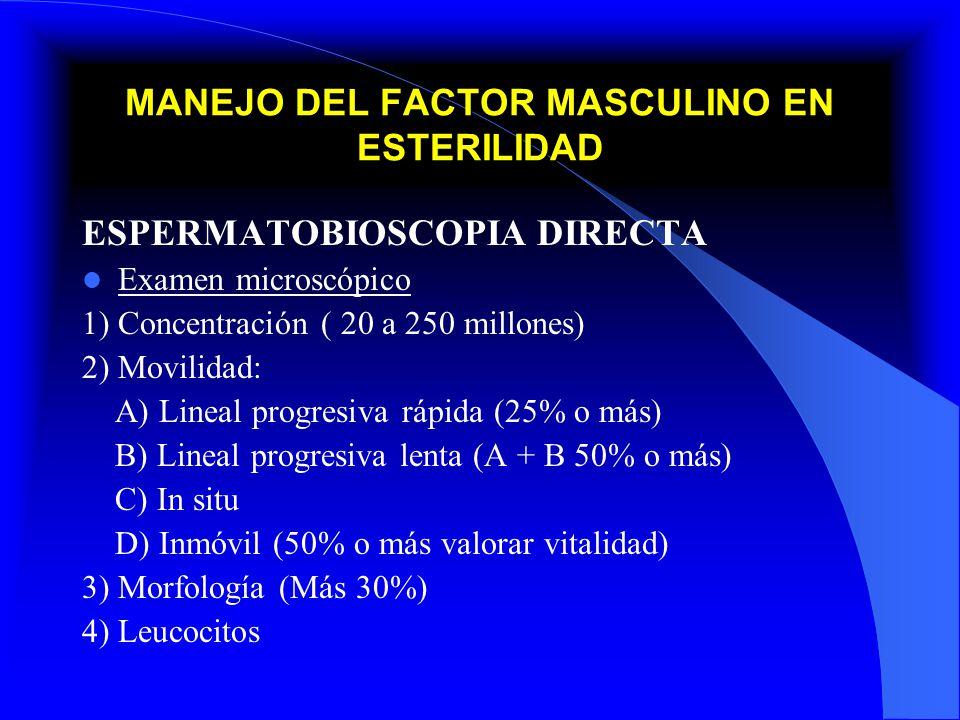 MANEJO DEL FACTOR MASCULINO EN ESTERILIDAD DEFINICIONES Aneyaculacion: Ausencia de eyaculado Azoospermia: Ausencia de espermatozoides Oligoespermia: Disminución en la concentración de espermatozoides (Menos 20 millones) Astenozoospermia: Disminución en la movilidad espermática ( menos del 50%) Teratozoospermia: Disminución o alteraciones en la morfología (Menos del 30%)