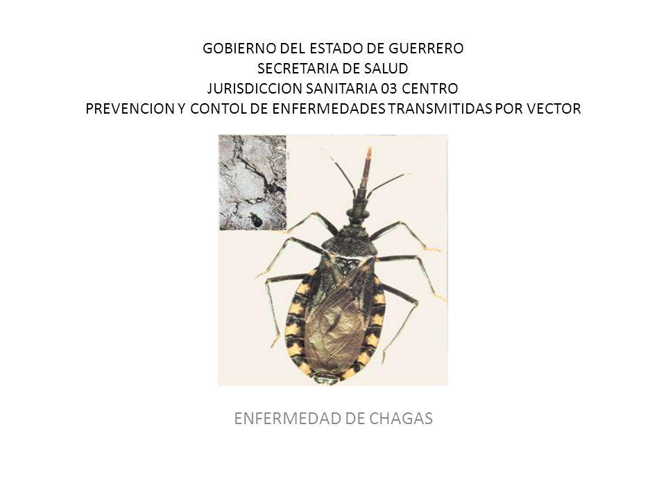 GOBIERNO DEL ESTADO DE GUERRERO SECRETARIA DE SALUD JURISDICCION SANITARIA 03 CENTRO PREVENCION Y CONTOL DE ENFERMEDADES TRANSMITIDAS POR VECTOR ENFERMEDAD DE CHAGAS