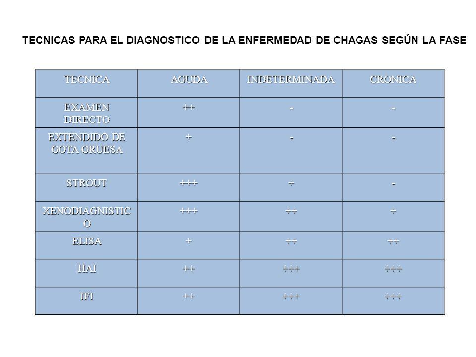 TECNICAAGUDAINDETERMINADACRONICA EXAMEN DIRECTO ++-- EXTENDIDO DE GOTA GRUESA +-- STROUT++++- XENODIAGNISTIC O ++++++ ELISA+++++ HAI++++++++ IFI++++++++ TECNICAS PARA EL DIAGNOSTICO DE LA ENFERMEDAD DE CHAGAS SEGÚN LA FASE