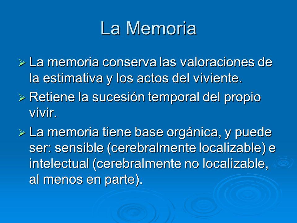 La Memoria La memoria conserva las valoraciones de la estimativa y los actos del viviente. La memoria conserva las valoraciones de la estimativa y los