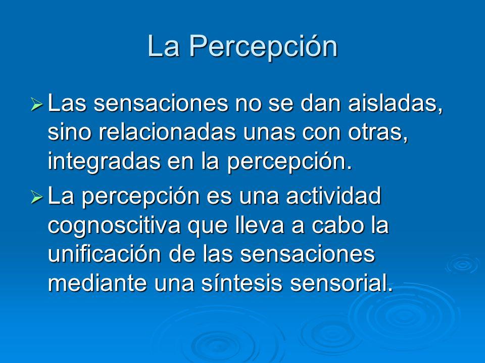 La Percepción Las sensaciones no se dan aisladas, sino relacionadas unas con otras, integradas en la percepción. Las sensaciones no se dan aisladas, s
