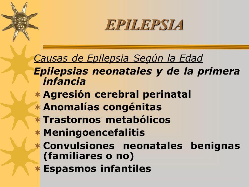 EPILEPSIA Causas de Epilepsia Según la Edad Epilepsias neonatales y de la primera infancia Agresión cerebral perinatal Anomalías congénitas Trastornos metabólicos Meningoencefalitis Convulsiones neonatales benignas (familiares o no) Espasmos infantiles