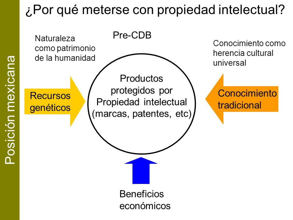 Conocimiento tradicional Productos protegidos por Propiedad intelectual (marcas, patentes, etc) Recursos genéticos Naturaleza como patrimonio de la hu