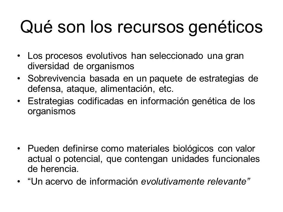Qué son los recursos genéticos Los procesos evolutivos han seleccionado una gran diversidad de organismos Sobrevivencia basada en un paquete de estrat