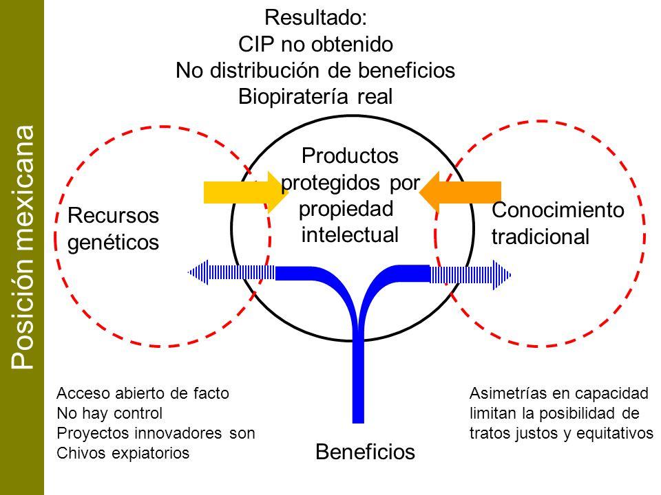 Resultado: CIP no obtenido No distribución de beneficios Biopiratería real Beneficios Asimetrías en capacidad limitan la posibilidad de tratos justos